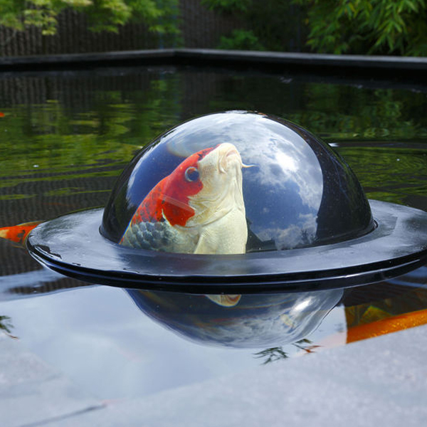 Floating Fish Dome by Professional landscaping services