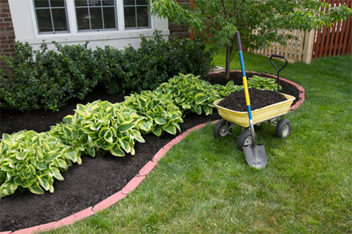 Bed maintenance by Professional landscaping services