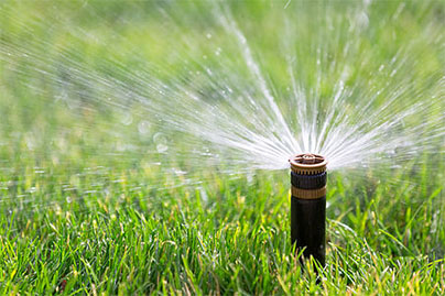 Irrigation by Professional landscaping services