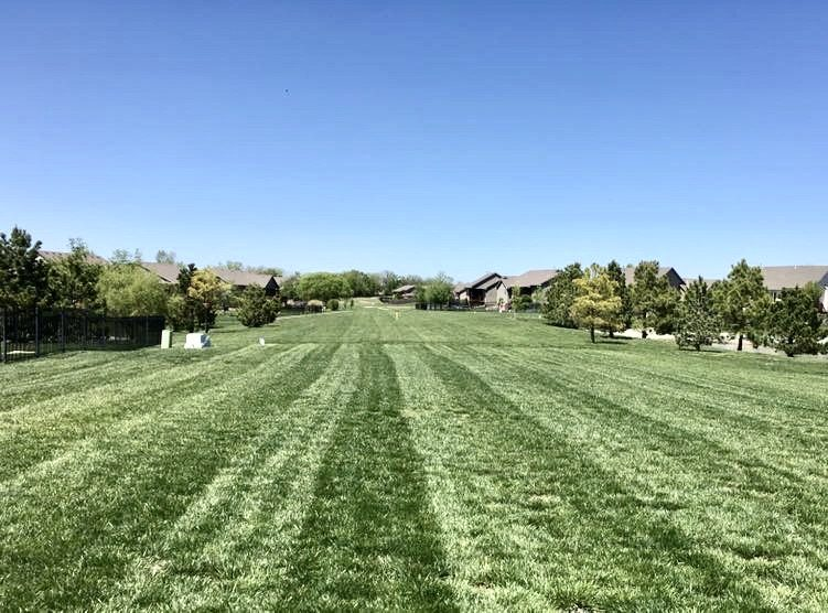mowing services of Professional Landscaping Services