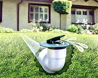 Popup drain system by Professional Landscaping Services